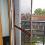 moskitiera na okno bochnia