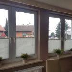 bochnia plisy na okna producent